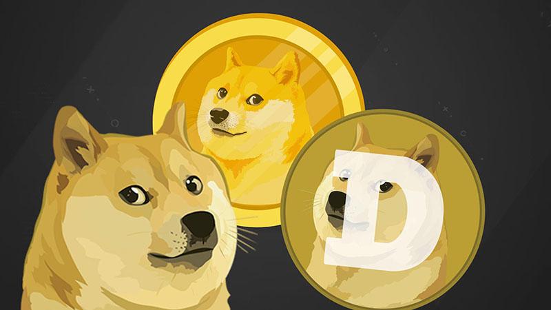 tiendientu.org-dogecoin-3