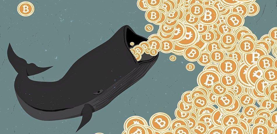 """""""Cá nhà táng"""" chuyển 18.000 BTC lên một ví nghi ngờ là của sàn BitMEX"""