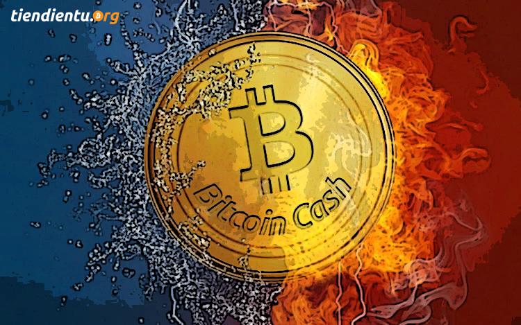 Tin tức crypto (15/12): Việt Nam dính mã độc, lật kèo Bitcoin Cash vs. Ethereum