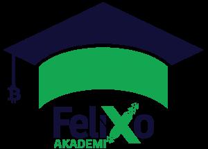 Felixo Akademi