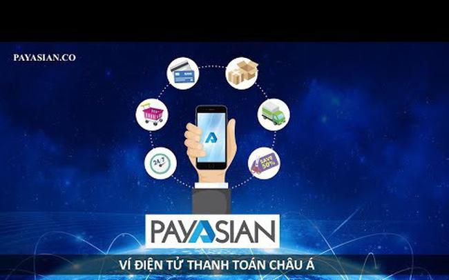 tiendientu.org-vi-dien-tu-payasian-1