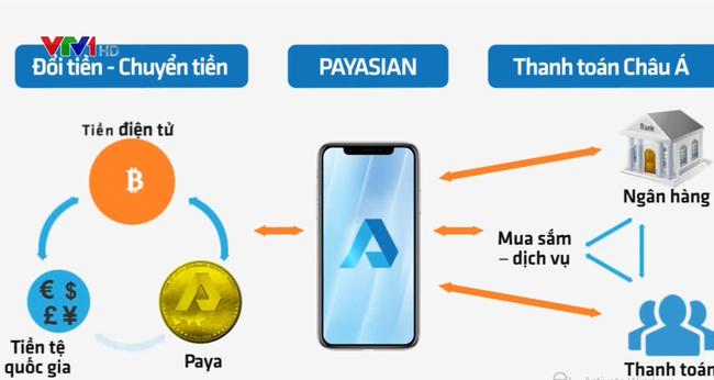 tiendientu.org-vi-dien-tu-payasian-3